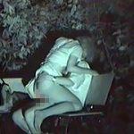 『盗撮戦士ナイトライダー7号 公然猥褻の性態を暴け!』|『買い物女子ヌキうちパンチラチェック! Vol.5』他